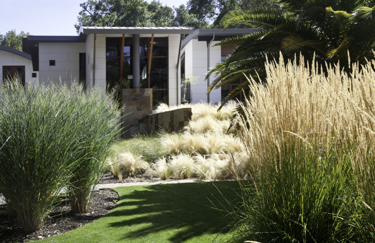 Saratoga Creek House landscaping by WA Design