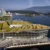 Living Green Roof - Photo Credit Nic Lehoux