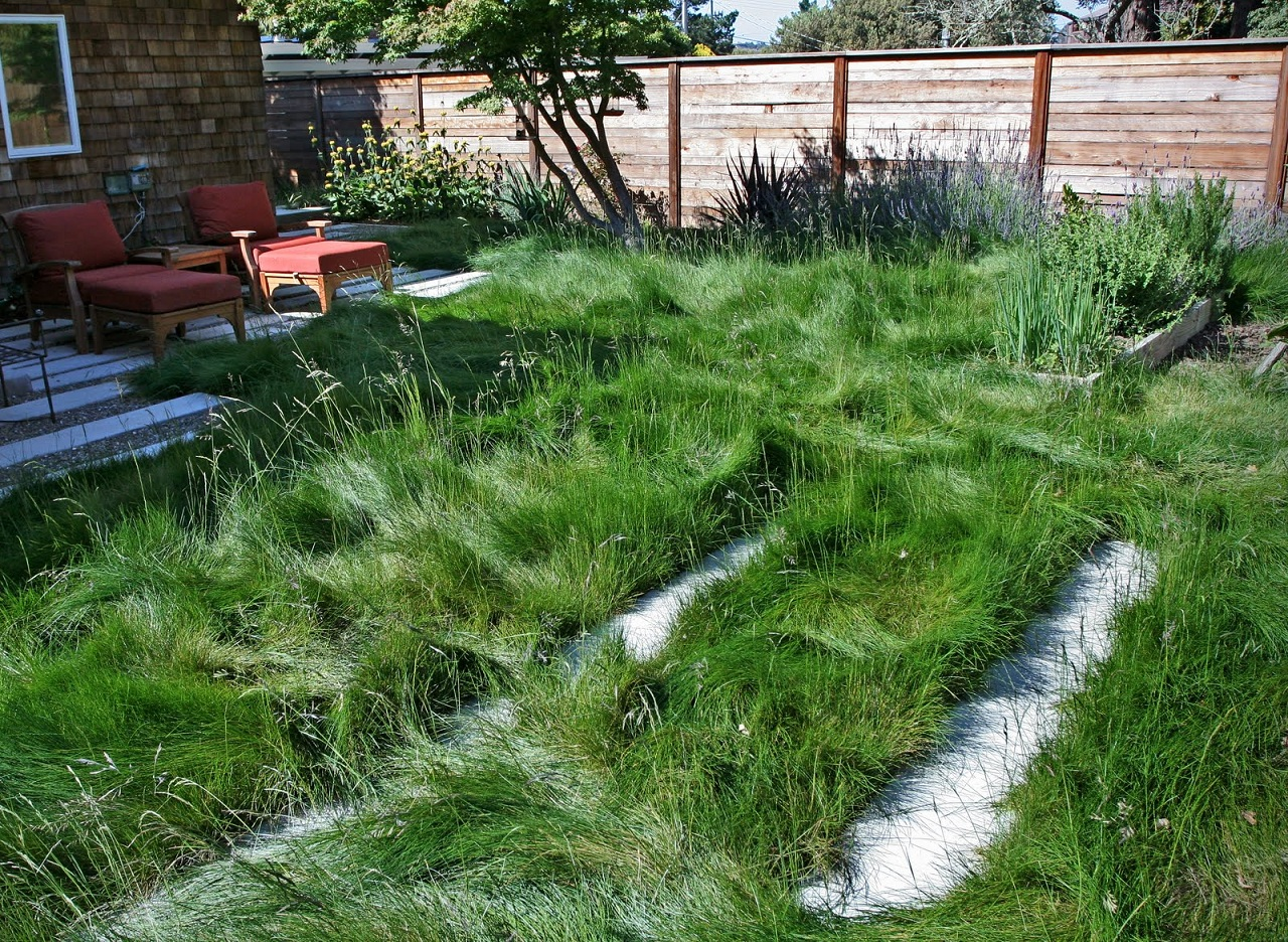 how to mow the lawn Proper mowing & watering is essential to a green, thick and healthy lawn here are the facts for lawns in the greater toronto area and other cool-season grass varieties.