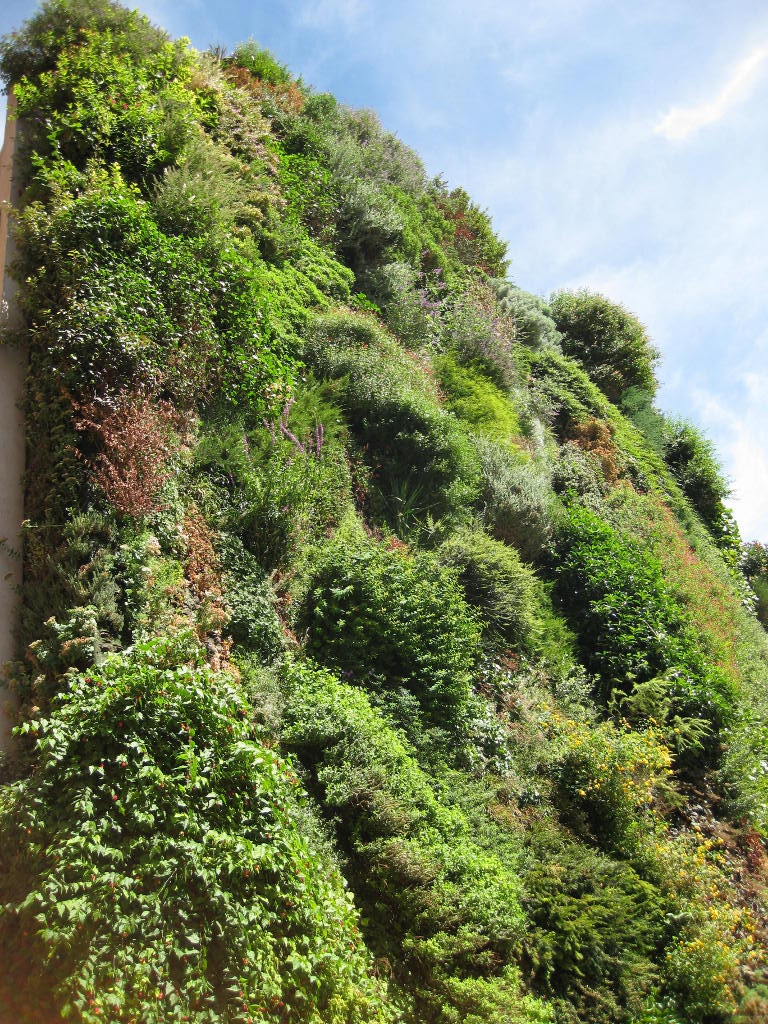 Patrick Blanc's Vertical Garden in Madrid, Spain