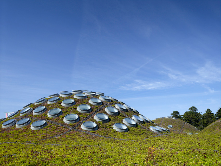 The circular skylight on the green roof of the California Academy of Sciences by Renzo Piano