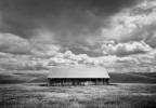 Barn In Dunnigan Hills - 2002 | David Stark Wilson