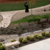 Rain Gardens and Bioswales | Credit: Buildipedia