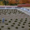 Vegetated Roof | Credit: Buildipedia