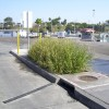 Urban Wetland Units | Credit: Modular Wetland Systems