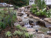 9 Ideas for Your Natural Landscaping