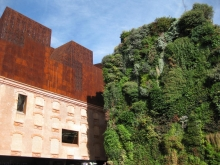 Patrick Blanc's Vertical Garden in Madrid