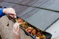 Maintenance Tips: Gutters and Downspouts