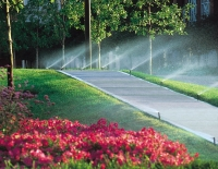 Irrigation: Is Grass Greener on the Other Side?